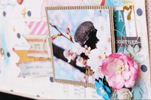 Love2_2015_spring2